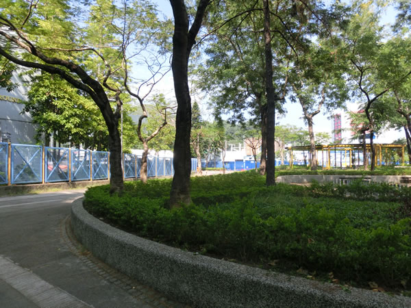 tai_po_sports_ground019